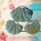 Seashell Scrubbies Large & Small